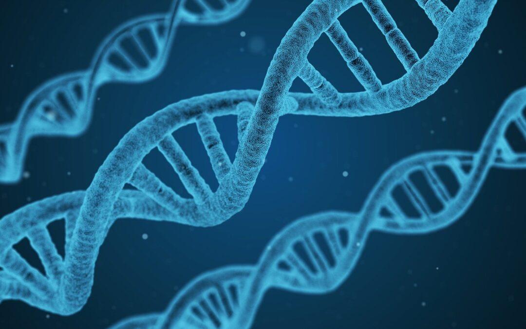 Genome-WHAT! Genetic Concussion Risk Factors